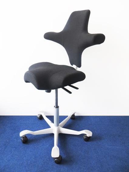 Bla Büro Liebt Ausstattung Büroeinrichtung Hag Capisco Puls